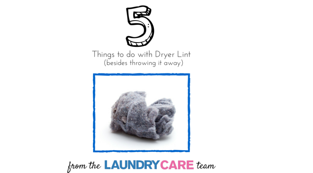 5 things to do with dryer lint