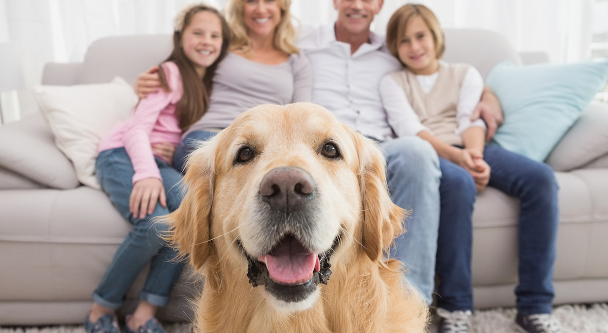 Smiling family sitting on couch with friendly dog in foreground